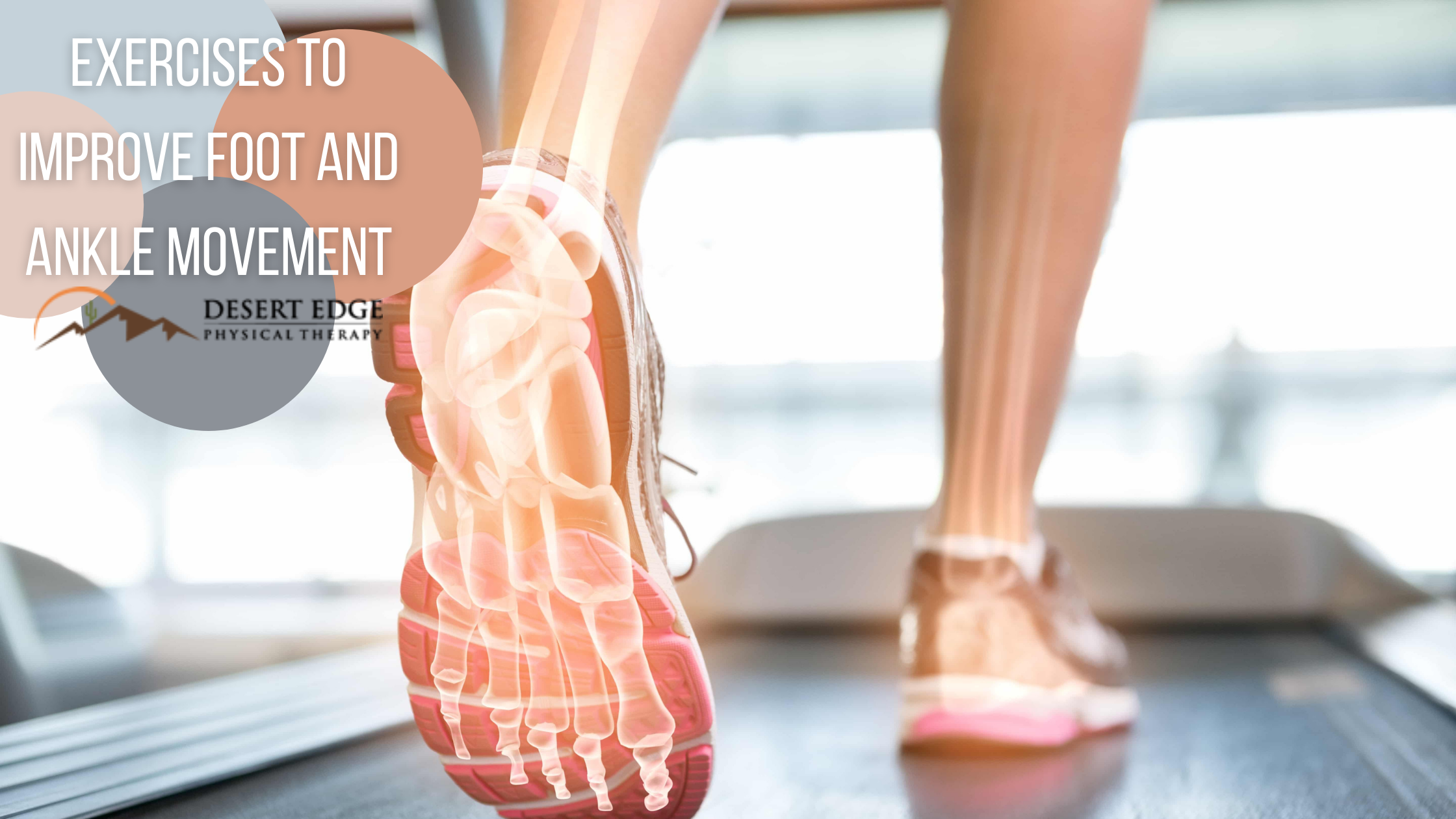 Exercises to Improve Foot and Ankle Movement